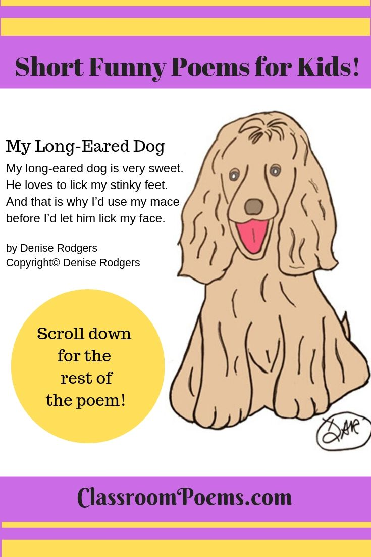 My Long Eared Dog, a short funny poem by Denise Rodgers on ClassroomPoems.com.