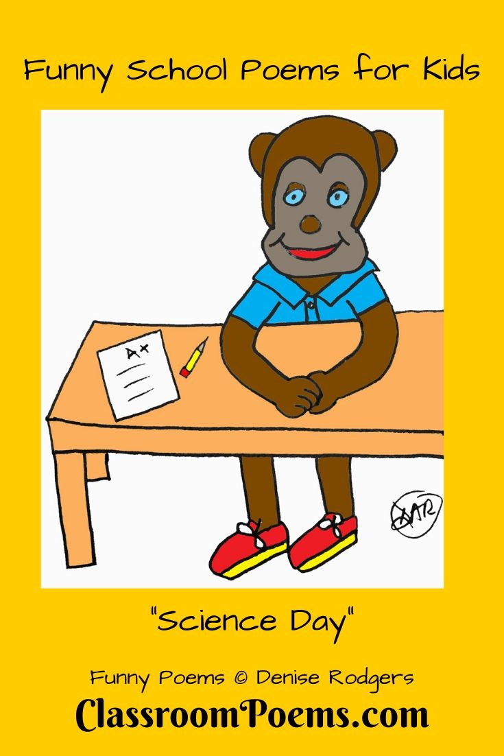Monkey at school desk with A+