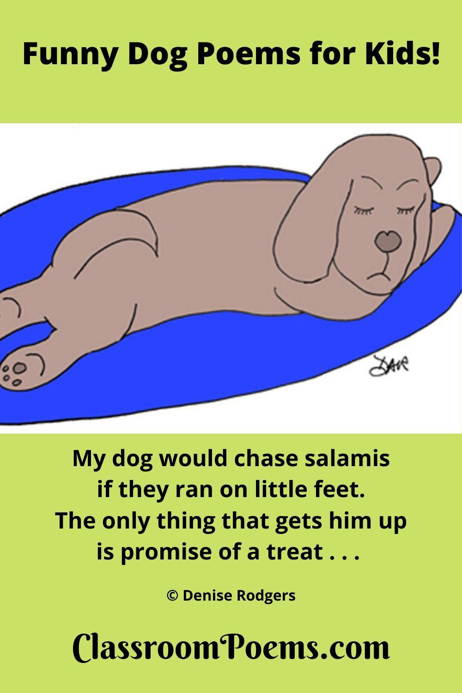sleeping dog, napping dog, dog on rug, funny dog poems