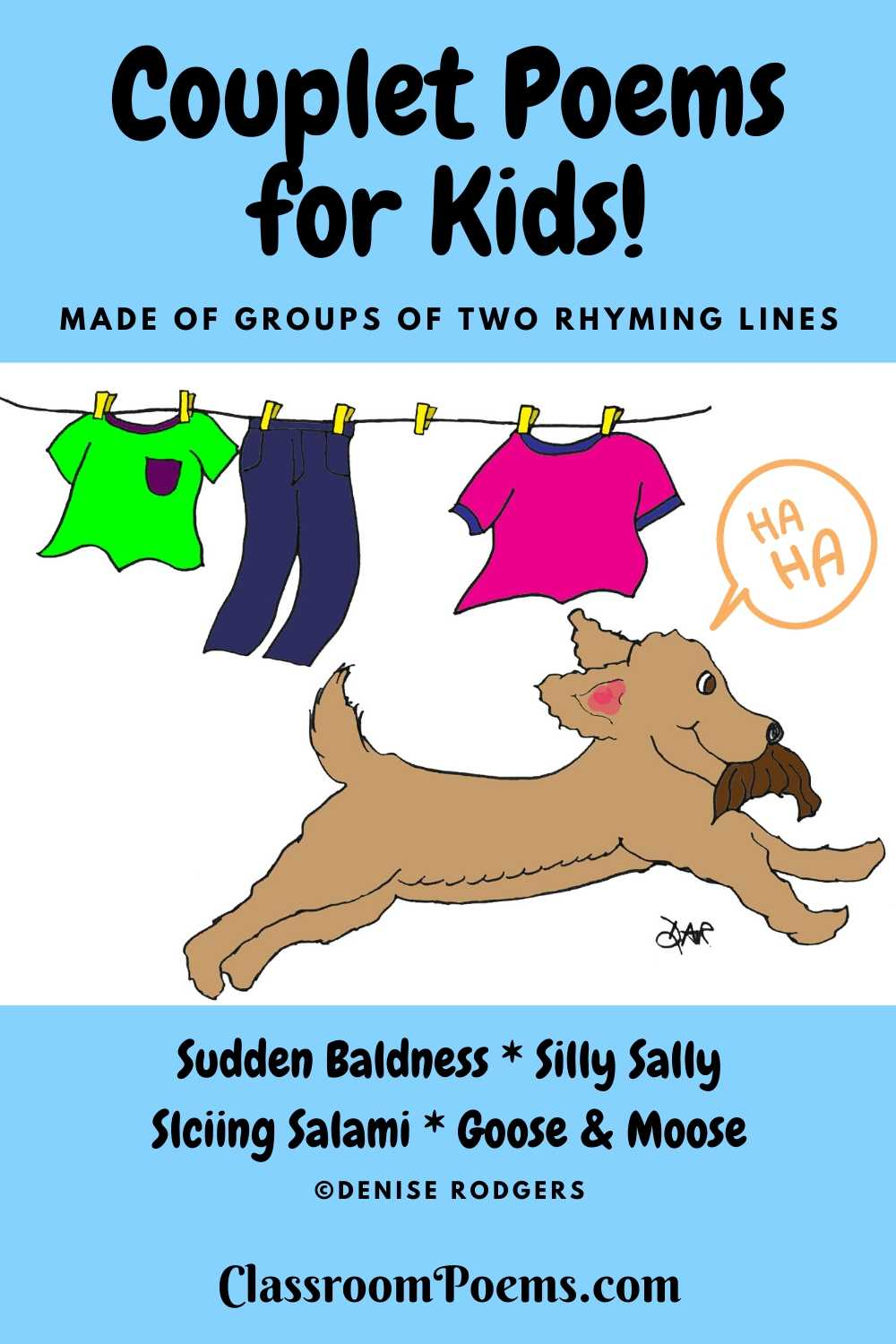 SUDDEN BALDNESS couplet poem by Denise Rodgers on ClassroomPoems.com.