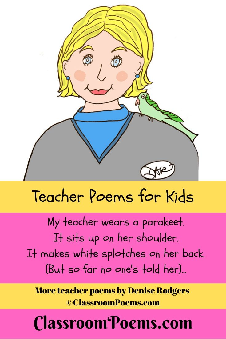 Teacher with parakeet drawing